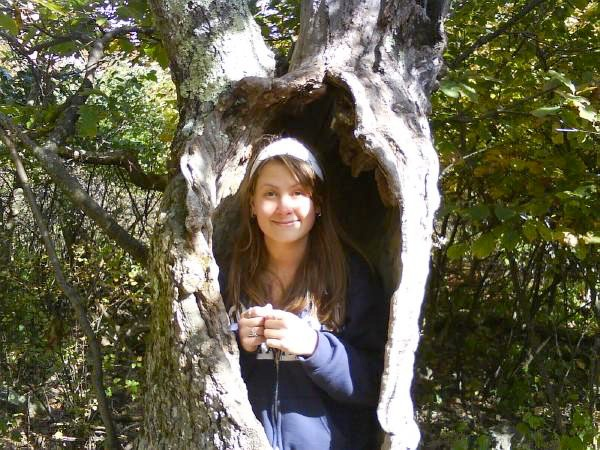 Shenendoah, me in a tree.
